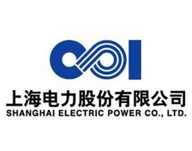 深圳大通建材合作伙伴-上海电力股份有限公司